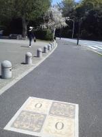 NEC_0599.JPG